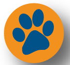 Final_Bootcamp_Pawprint